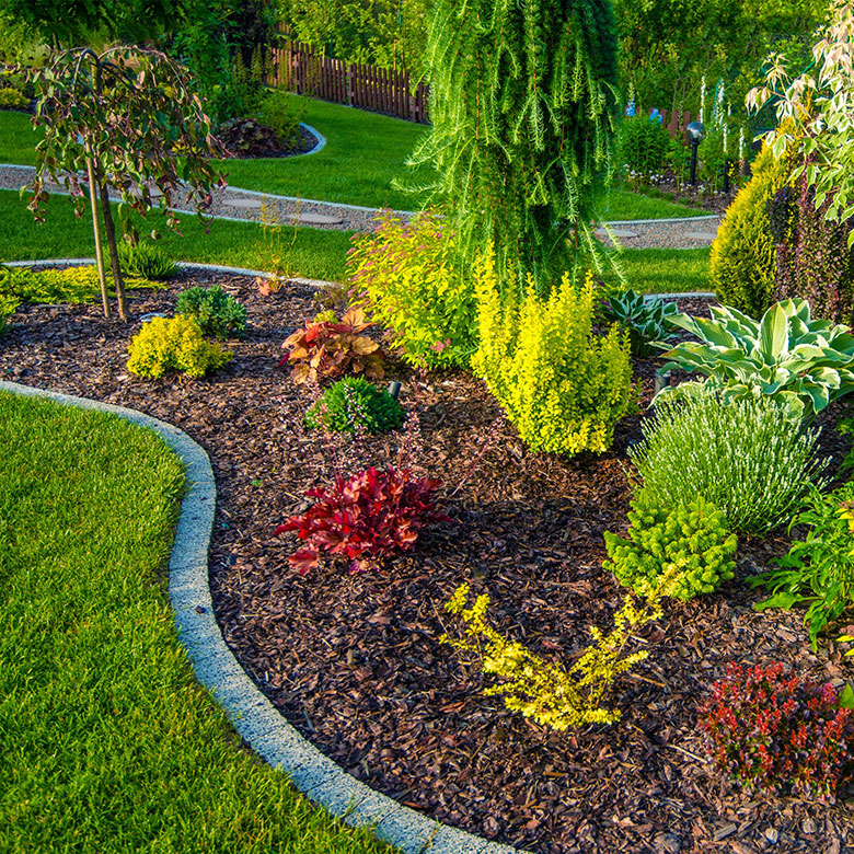 Sj Landscapes And Gardening Services: Georgia Roots Landscaping